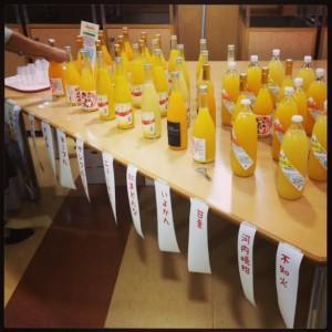 愛媛のみかんジュースが勢揃い!もちろんどれもストレートジュースです♪ -日本地理学会秋季大会 懇親会にて